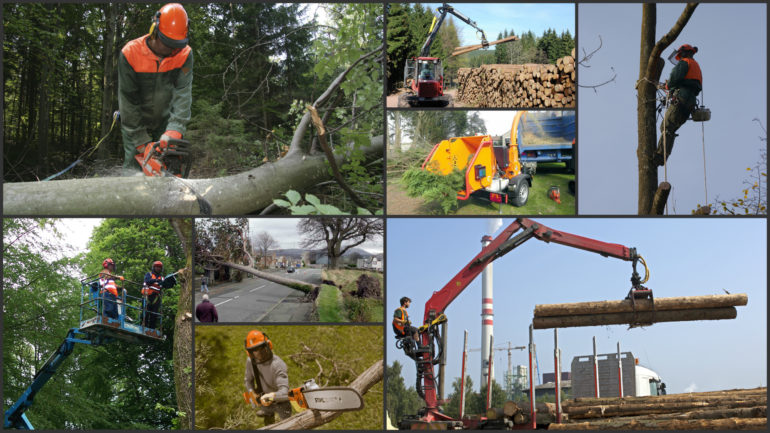 Forestry Safety Training Courses in Laois and Ireland