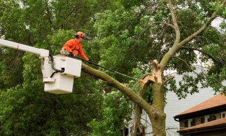 KTC Safety Provide Operate a Chainsaw from a MEWP Training Courses in Ireland
